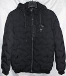 Мужские демисезонные куртки 1815-1
