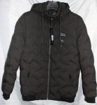 Мужские демисезонные куртки 1815-3