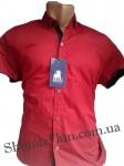 Мужские рубашки короткий рукав - батал Б2772-5