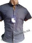 Мужские рубашки короткий рукав - батал Б2772-6