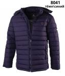 Куртка мужская зима REMAIN 8041-3