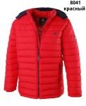 Куртка мужская зима REMAIN 8041-2