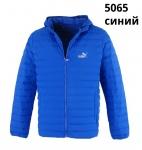 Мужские демисезонные куртки 5065-1