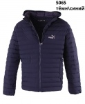 Мужские демисезонные куртки 5065-4