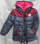 Детские демисезонные куртки 2-6 лет CH-0603-1