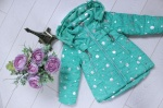 Детские демисезонные куртки р. 92-116 HL026-2