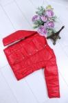 Детские демисезонные куртки р. 98-128 45426-1