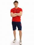 Летний мужской спортивный костюм