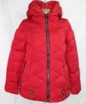 Женские весенние куртки FD8203-5