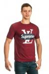 Мужская футболка S21-15
