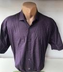 Мужские рубашки короткий рукав - батал Б2092