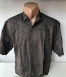 Мужские рубашки короткий рукав - батал Б2087-1