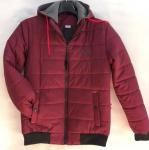 Мужские демисезонные куртки S-2254-9