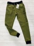 Спортивные мужские брюки на DIZEL DEFEND Ш12-1-1