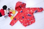 Детские демисезонные куртки р. 86-116 45410-1