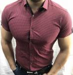 Мужские рубашки с коротким рукавом 2762-4
